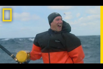 Bombs Away   Wicked Tuna: Outer Banks Catch of the Week